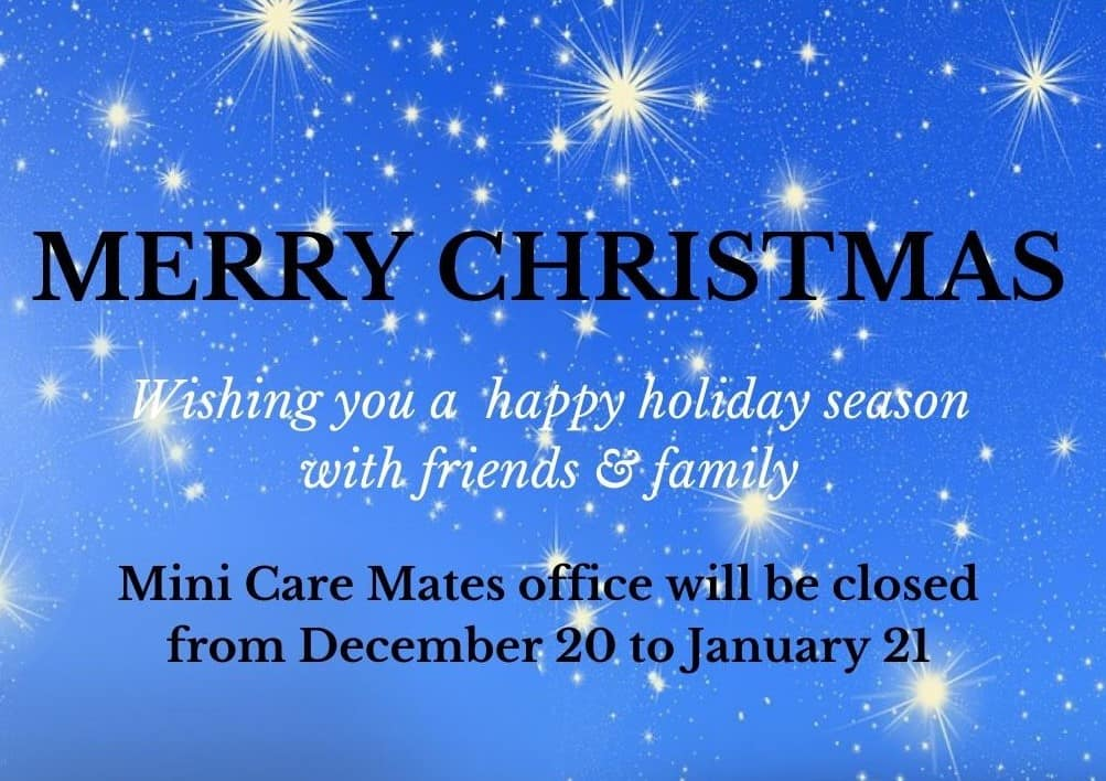 Christmas closing hours mini care mates